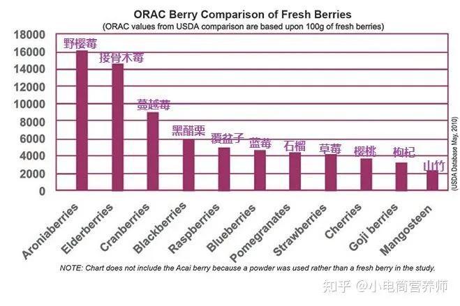 盘点接骨木莓的主要成分:为什么它能够成为抗氧化的王者?